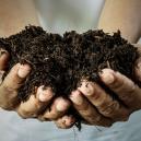 Fertilizzante Organico Casalingo: Come Si Prepara?