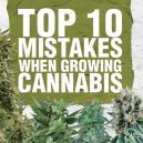 La Top 10 degli errori più comuni nella coltivazione della Cannabis