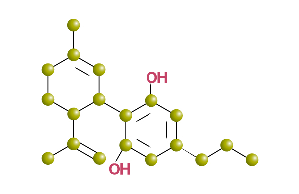 Cannabidivarin