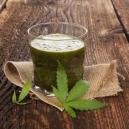 I Benefici dei Succhi di Cannabis Cruda