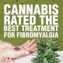 Cannabis: la migliore medicina per trattare la fibromialgia