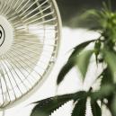 L'Importanza della Ventilazione Quando Si Coltiva Cannabis