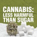 La Cannabis è meno pericolosa dello zucchero